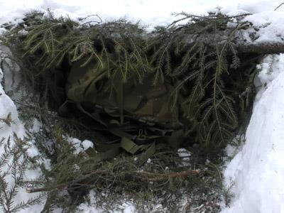 refugio de supervivencia con árbol caído