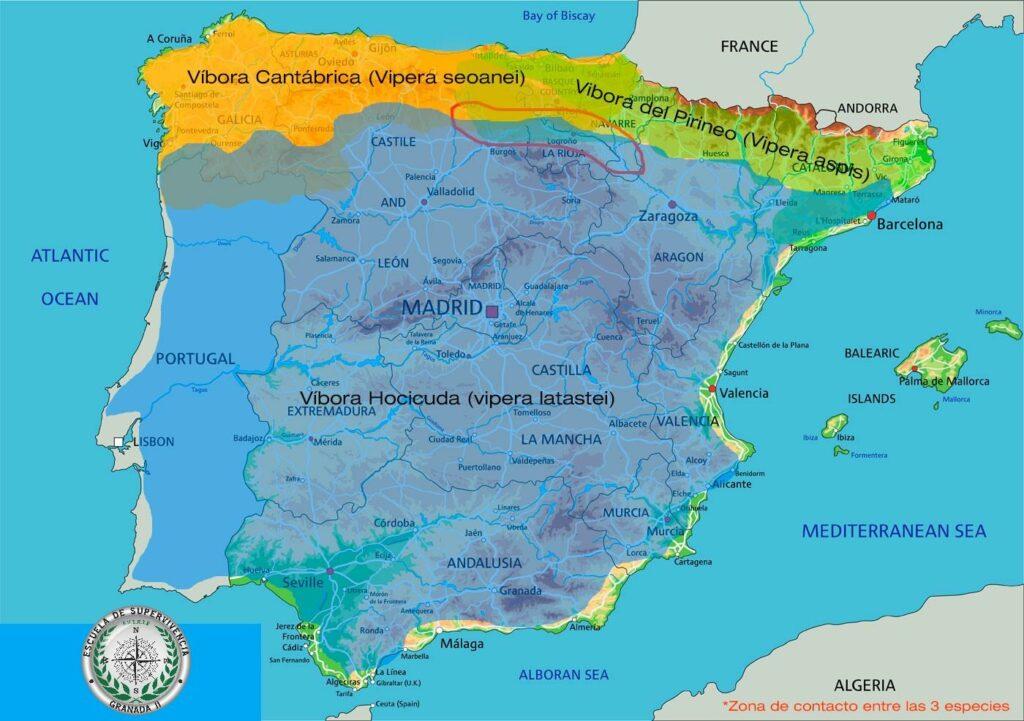 distribución de las especies víboras península ibérica